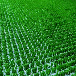 Искусственная трава Рулон шир: 90-125см. п/эт на ткан. основе.