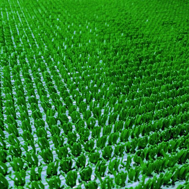 Искусственная трава доставка